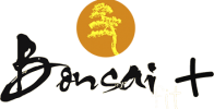 bonsai-fit-plus-logo